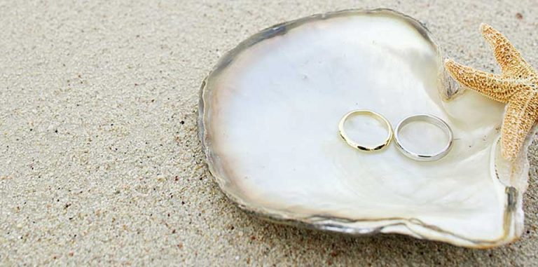 Wedding Rings in a sea shell